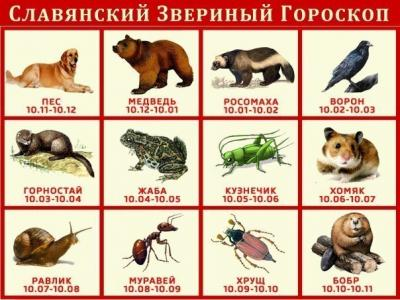 Звериный славянский гороскоп